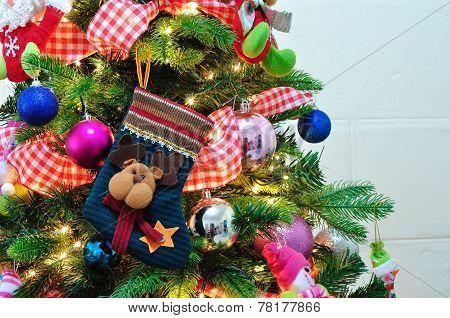 Christmas Sock Hanging On A Christmas Tree.