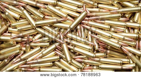 223/5.56 Cartridges