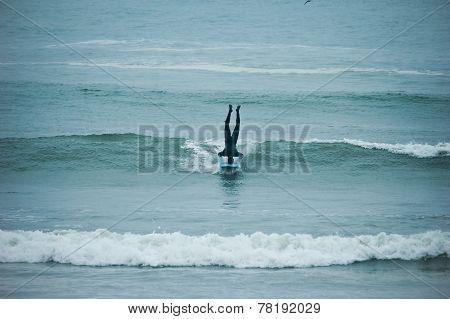 Creative Surfer