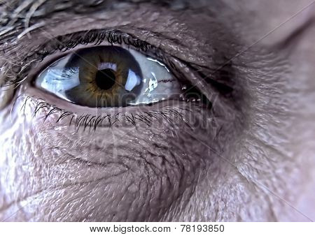 Older Man's Eye