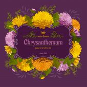 picture of chrysanthemum  - Beautiful card with chrysanthemum on violet background - JPG