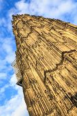 pic of dom  - Facade of the Dom church in the city Cologne lit by evening sun - JPG