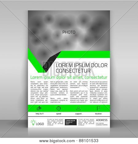 Business Flyer with Green Lines.
