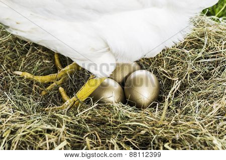 The Hen That Lays Golden Eggs