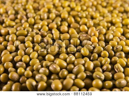 Mung or moong beans