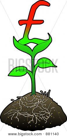 Growth Pound Symbol