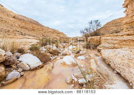 Scenery In The Desert