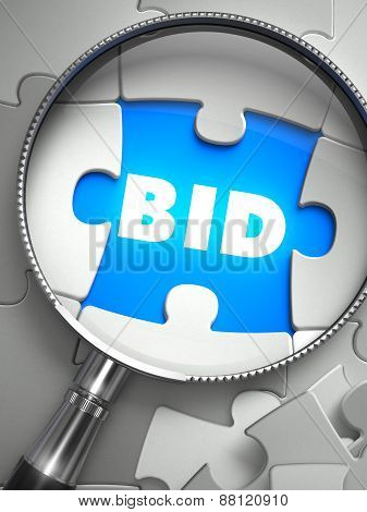 Bid - Puzzle with Missing Piece through Loupe.