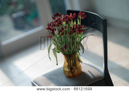 Vase of flowers on chair