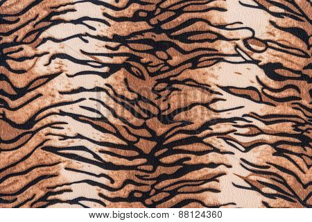 Texture Of Tiger Pelt And Fur