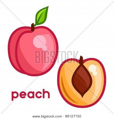 Stylized illustration of fresh peach on white background