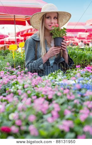 Attractive blonde woman with straw hat holding and smelling flower pot on flower marketplace.