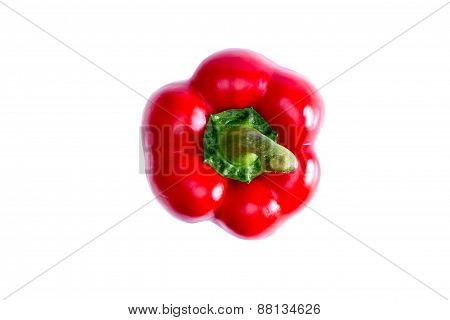 Fresh Succulent Red Bell Pepper