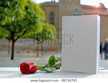White book loves red rose