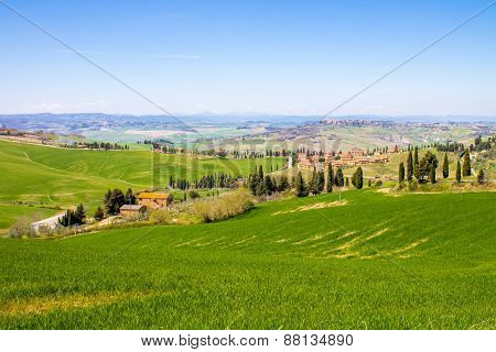 Tuscan Landscape, View Of The Green Val D'orcia