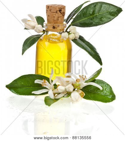 Glass bottle essential oil with fresh orange flower isolated on white background