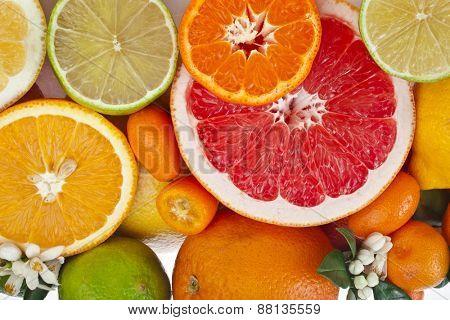 Beautiful citrus fruits mixed close up  top view background