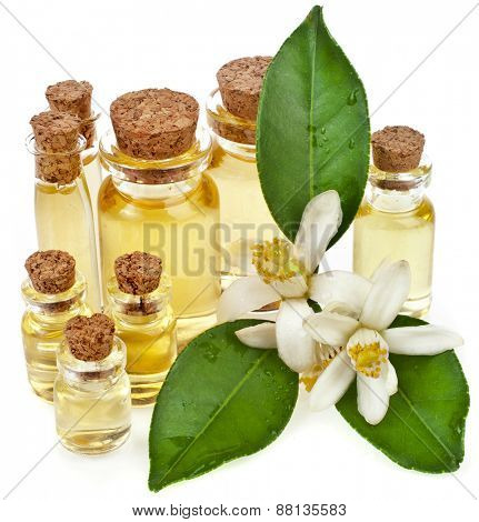 Glass bottles of herbal essences  oil with fresh citrus flowers isolated on white background