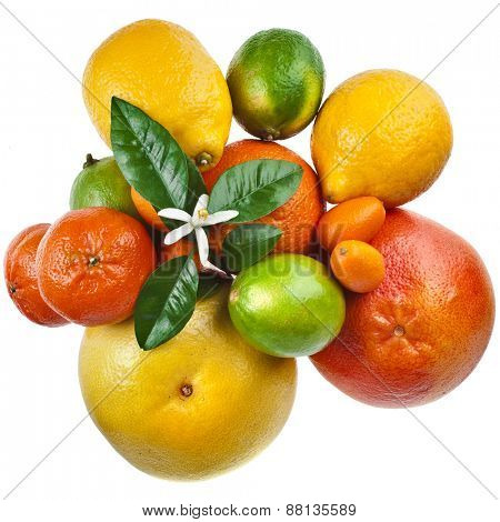 Beautiful citrus fruits mix top view isolated on white background