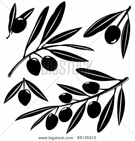 Olive branches silhouettes