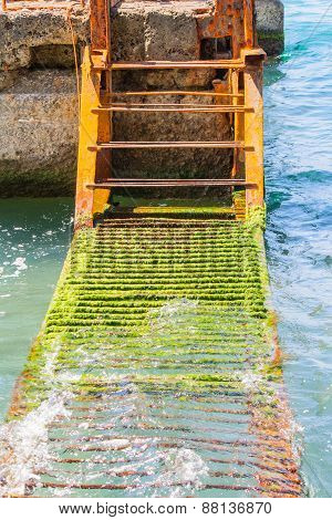A rusty ladder in the water
