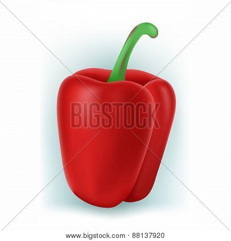 Sweet Bulgarian pepper