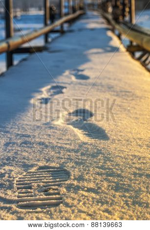 Footprints In The Snow Shoes
