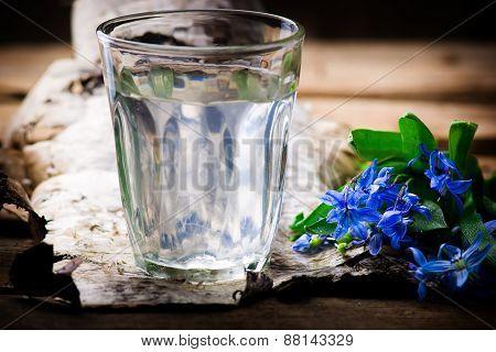 Birch Sap In A Glass