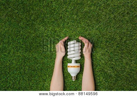 Hands with energy saving eco lamp over green grass