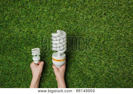 Hands with big and small energy saving lamps over grass