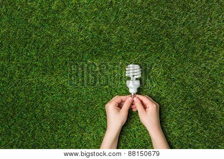 Hands holding  energy saving eco lamp over grass