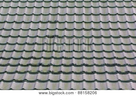 Green Roof Background And Texture