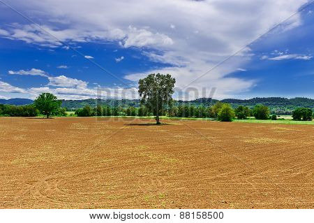 Plowed Fields