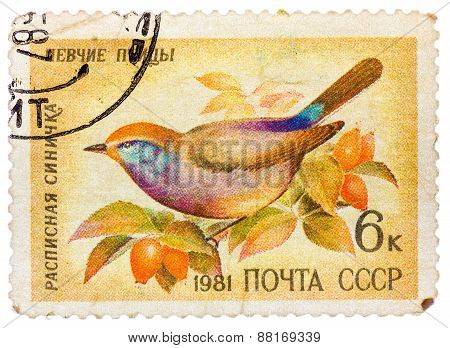 Stamp printed in USSR, shows Siberian Tit Leptopoecile sophiae