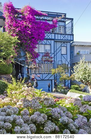 Blue house with flowers in San Francisco
