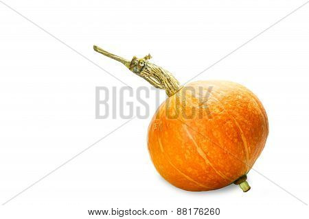 Isolated Orange Pumpkin On White
