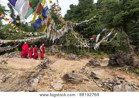 Buddhist monks walking under prayer flags