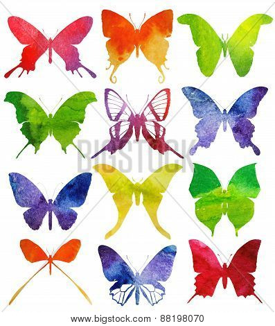 Set of butterflies isolated on white background. Watercolor Vector illustration