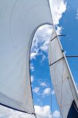 Постер, плакат: Sails filled with wind against the sky with clouds