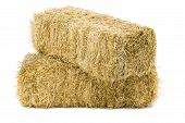 pic of hay bale  - Two bales of hay on white background - JPG