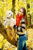 stock photo of west highland white terrier  - woman with west highland terrier in the park - JPG