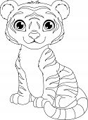 picture of tiger cub  - cute tiger cub sits on a white background - JPG