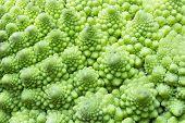stock photo of fibonacci  - Macro close up detail of a Romanesco Broccoli - JPG