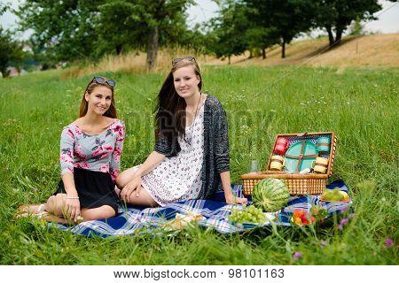 Best friends having a picnic