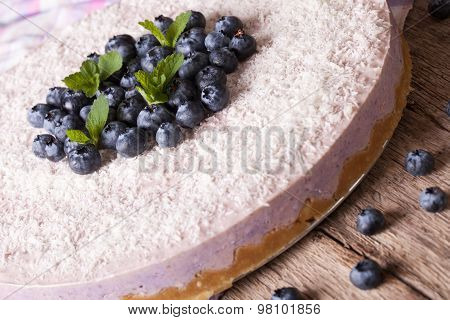 Homemade Blueberry Cheesecake With Coconut Close-up. Horizontal