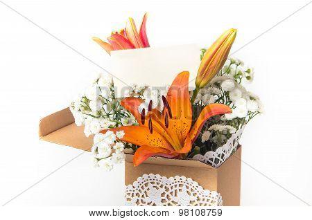 Orange Lily Flower