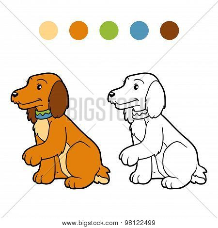 Coloring Book For Children (spaniel Dog)