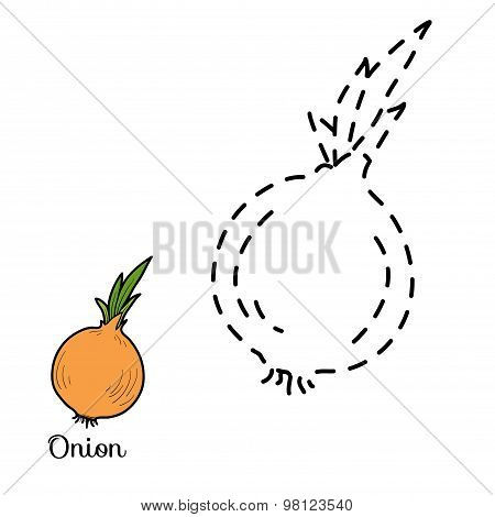 Connect The Dots: Fruits And Vegetables (onion)