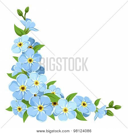 Blue forget-me-not flowers. Vector corner background.