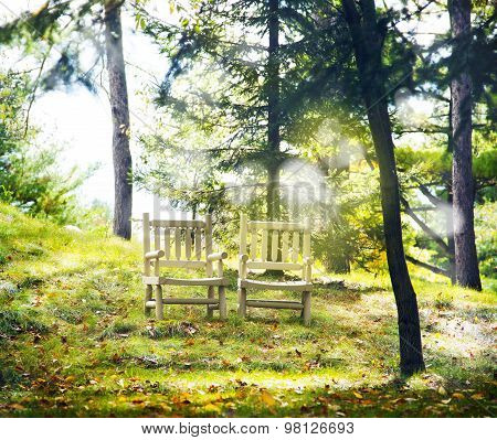 Two Wooden Chairs In Nature. Autumn Landscape